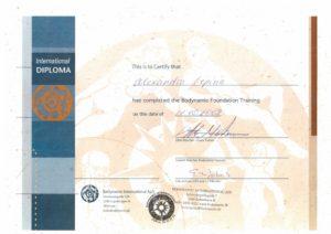 foto-bodinamika-sertificate